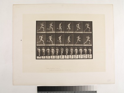 Animal Locomotion. Plate 62.