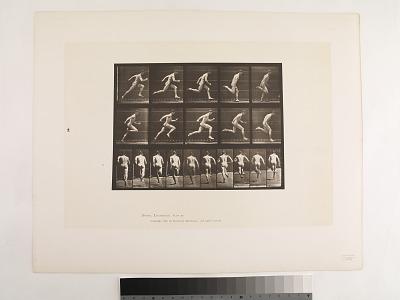 Animal Locomotion. Plate 63.