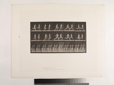Animal Locomotion. Plate 69.