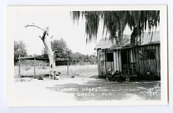 African-American Shack in Florida