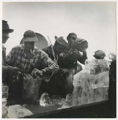 Men gathering up ice