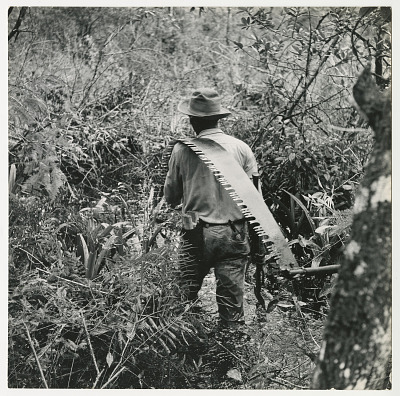 Man carrying saw over his shoulder