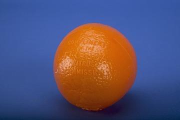 1964 World's Fair Florida Citrus Commission Souvenir Orange