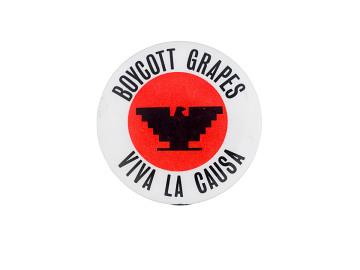 Boycott Grapes--Viva La Causa