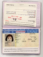 Falsified Passport