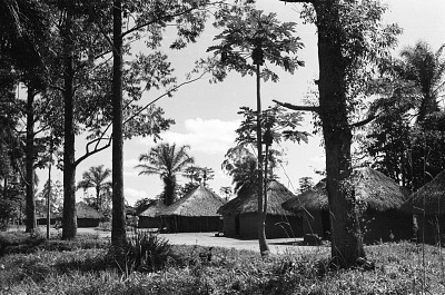 Traditional houses among the Lulua people, Bakwa Balaie village, near Kananga, Congo (Democratic Republic), [negative]