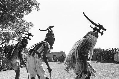 Three masked performers, one wearing male horizontal Chi wara headdress, the other two wearing double-headed horizontal Chi wara headdresses, each referred to as n'gonzon koun, Bamako (national district), Mali, [negative]