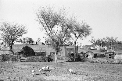 Rural Hausa family compound with farmer raised conical granaries, east of Zinder, Niger, [negative]