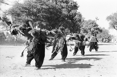 Kanaga masquerade during the Dama ceremony. Sanga, Mali, [negative]