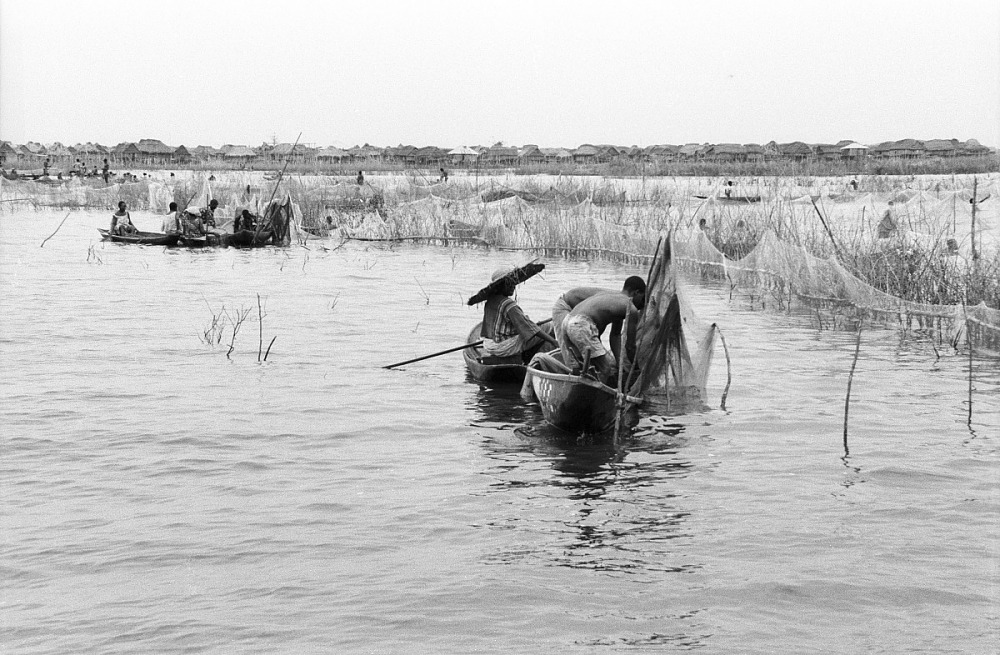 Resources :: Fish farming on Lake Nokwe, Ganvie, Benin, [negative ...
