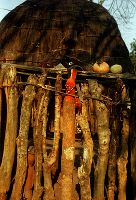 Pende [slide] : [Chief's ritual house at Kombo-Kiboto]