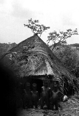 Pende [slide] : [Chief's ritual house at Totshi]