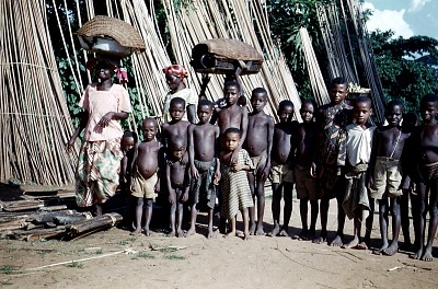 Bamboo poles drying at the edge of the agbogo ward common, Ndibe village, Afikpo Village-Group, Nigeria. [slide]