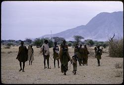 Group of pastoral Maasai, Rift valley region, Kenya. [slide]