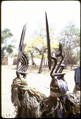 Masked performers wearing pair of male and female Chi wara headdresses, Bamako (national district), Mali. [slide]