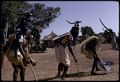 Three masked performers, one wearing male horizontal Chi wara headdress, the other two wearing double-headed horizontal Chi wara headdresses, each referred to as n'gonzon koun, Bamako (national district), Mali. [slide]