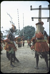 Sirige and kanaga masqueraders during the Dama ceremony, Sanga, Mali. [slide]