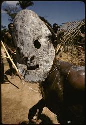 Initiation rituals among Ndaka people, near Epulu, Ituri Forest, Congo (Democratic Republic), [slide]