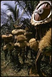 Minganji masqueraders, near Gungu, Congo (Democratic Republic), [slide]