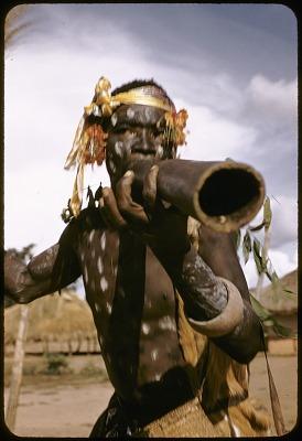 Dakpa man blowing into wooden trumpet known as ongo, Ubangi-Shari region, Central African Republic. [slide]