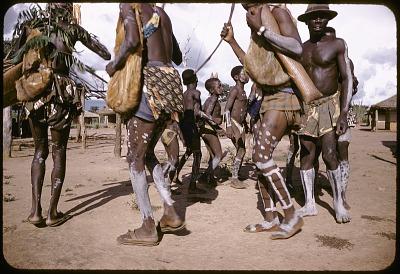 Dakpa horn ensemble accompanying boys during their initiaton rites, Ubangi-Shari region, Central African Republic. [slide]
