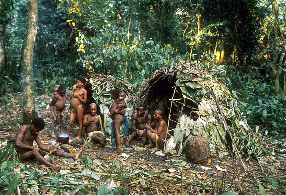 mbuti culture