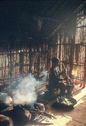 Mangbetu woman pounds manioc leaves to cook in palm oil, Medje village, Congo (Democratic Republic). [slide]