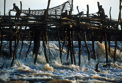 Conical fish-traps suspended from wood construction in the cataracts, near Kisangani, Congo (Democratic Republic), [slide]