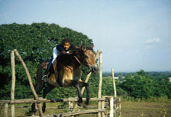 Son of former Minister of Culture Paul Mushiete, with his horse at a riding club, Kinshasa, Congo (Democratic Republic), [slide]