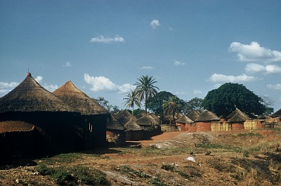 Nupe compounds with perimeter fence made of grass, Mokwe village, Nigeria, [slide]