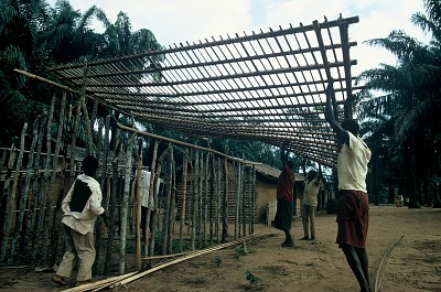 The construction of a house, near Mushenge, Congo (Democratic Republic), [slide]