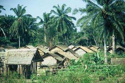 Traditional village among the Kuba people, Bushole village, Congo (Democratic Republic), [slide]