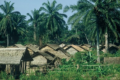 Traditional village among the Kuba people, Bushole village, Congo (Democratic Republic), [slide]