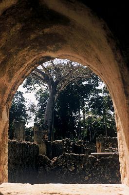 Excavated houses, ruins of the walled city of Gedi, south of Malindi, Kenya. [slide]