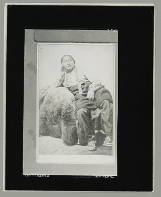 Portrait of Mamimick? or Eagle Head? in Native Dress With Buffalo Robe 1867