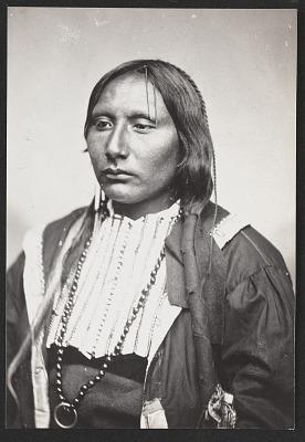 Chief Big Tree 1870