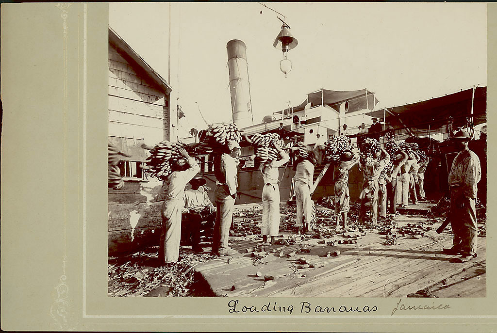 images for Jamaican Men Loading Bananas onto Ship 1904