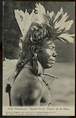 Apulei Preta, Old Man, 70 Years Old, Wearing Feather Headdress, Feather Earrings, Bead Necklaces and Holding Bow (Profile) 1904
