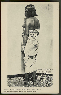 Portrait of Woman, Caduveo Slave, 18-22 Years Old, with Body Paint, in Costume and Wearing Ornaments 1904