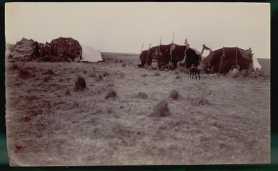 View of Camp Showing Group in Costume, Including Non-Indian Man, Trader, Outside Toldos (Skin and Pole Tents); Meat Drying On Poles JAN 1898