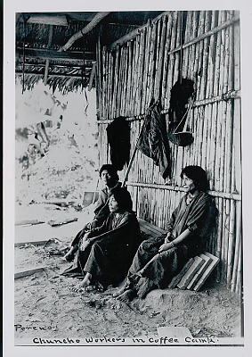 Three Amahuaca Men in Costume Outside Bamboo House with Thatch Roof In Coffee Camp JUL 1910