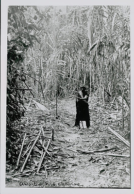 Amahuaca Man, Holding Bow and Arrow on Jungle Path JUL 1910