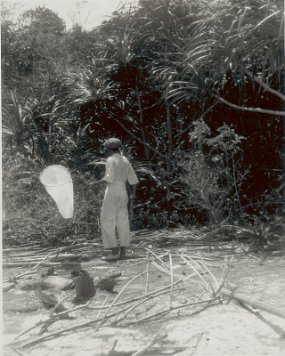 Man in Costume with Butterfly? Net on Beach 1923