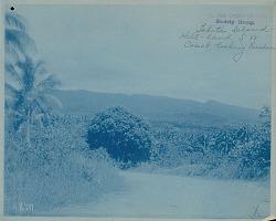 Landscape View from Southwest Coast, Looking Eastward 1899