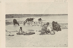 Group in Costume and with Cattle Near Water Hole in Desert 1903