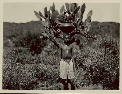 Girl in Costume with Jar Atop Head; Cactus? Plant and Shrubs 1922