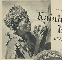 Aged Bushman Drinking Water from Ostrich Eggshell Container SEP 1936