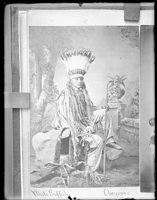 Photo of Portrait of White Buffalo in Native Dress with Feather Headdress and Holding Bow and Arrow 1879