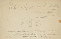 """""""Byanzi? Execution"""" 1885 Drawing"""