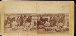 """""""Sioux Indians butchering a steer"""""""